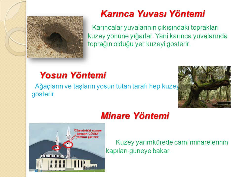 Karınca Yuvası Yöntemi Karıncalar yuvalarının çıkışındaki toprakları hep kuzey yönüne yığarlar. Yani karınca yuvalarında toprağın olduğu yer kuzeyi gö