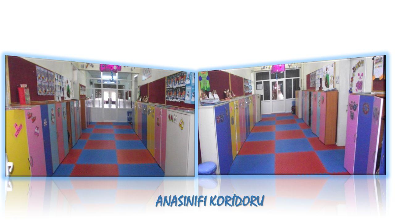 ANASINIFI KORİDORU