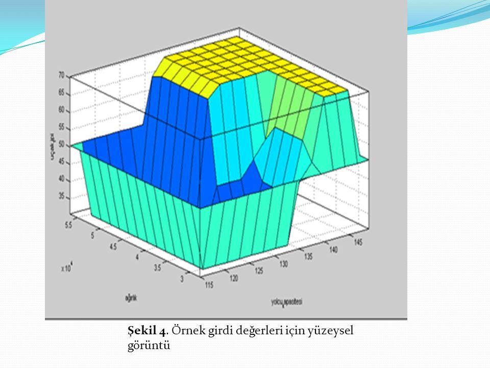 Şekil 4. Örnek girdi değerleri için yüzeysel görüntü