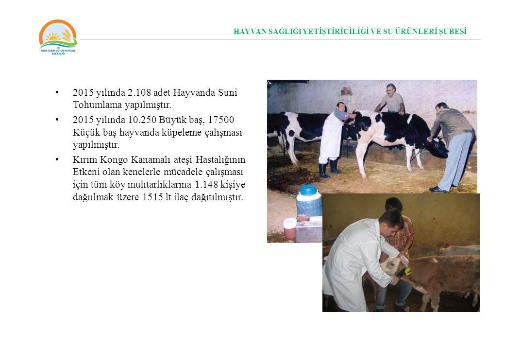 2015 yılında 2.108 adet Hayvanda Suni Tohumlama yapılmıştır. 2015 yılında 10.250 Büyük baş, 17500 Küçük baş hayvanda küpeleme çalışması yapılmıştır. K
