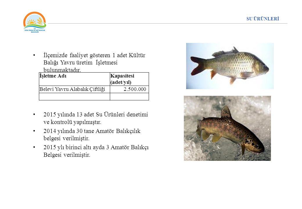 İlçemizde faaliyet gösteren 1 adet Kültür Balığı Yavru üretim İşletmesi bulunmaktadır. 2015 yılında 13 adet Su Ürünleri denetimi ve kontrolü yapılmışt