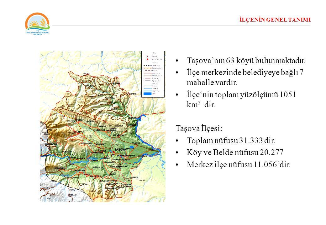 İLÇENİN GENEL TANIMI Taşova'nın 63 köyü bulunmaktadır. İlçe merkezinde belediyeye bağlı 7 mahalle vardır. İlçe'nin toplam yüzölçümü 1051 km² dir. Taşo