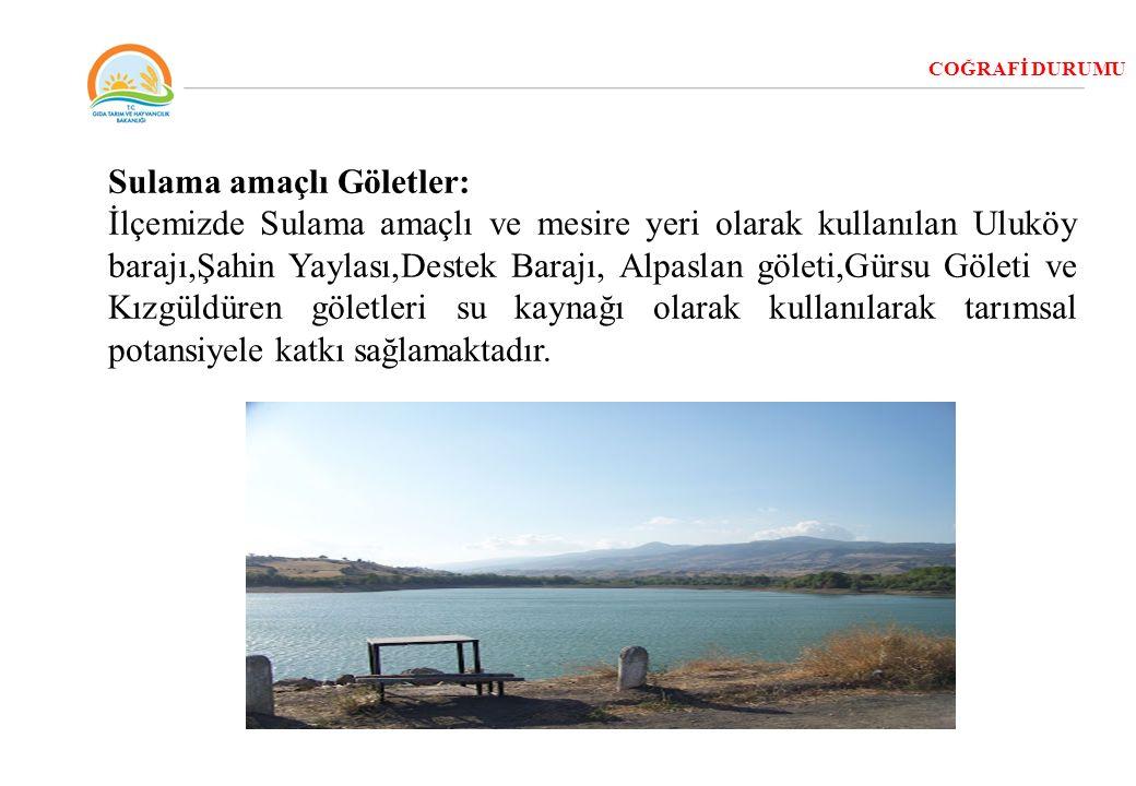 COĞRAFİ DURUMU Sulama amaçlı Göletler: İlçemizde Sulama amaçlı ve mesire yeri olarak kullanılan Uluköy barajı,Şahin Yaylası,Destek Barajı, Alpaslan gö