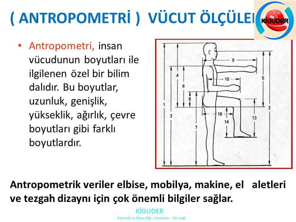 Antropometrik veriler ile çalışanın maksimum uzanma imkanı ve vücudun hareketli uzuvlarının ulaşabildiği alanları belirler.