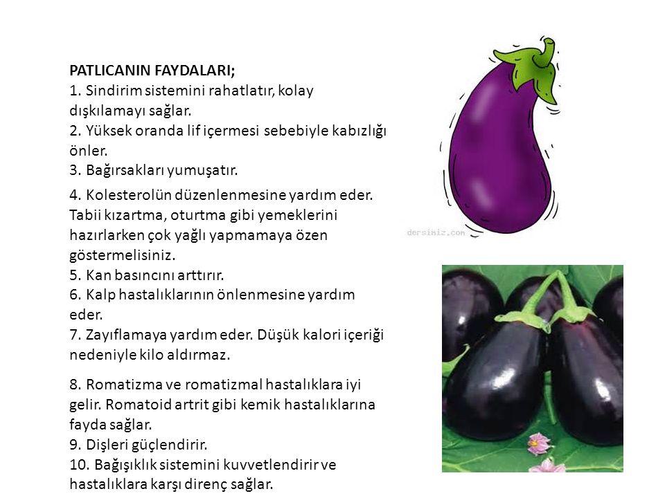 PATLICANIN BESİN DEĞERİ; 100 gr.Patlıcanda; -24 kalori – DV %1 -3 gr.