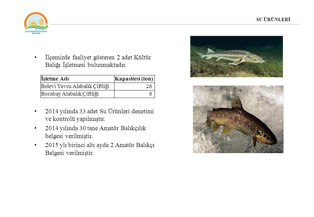 İlçemizde faaliyet gösteren 2 adet Kültür Balığı İşletmesi bulunmaktadır. 2014 yılında 33 adet Su Ürünleri denetimi ve kontrolü yapılmıştır. 2014 yılı