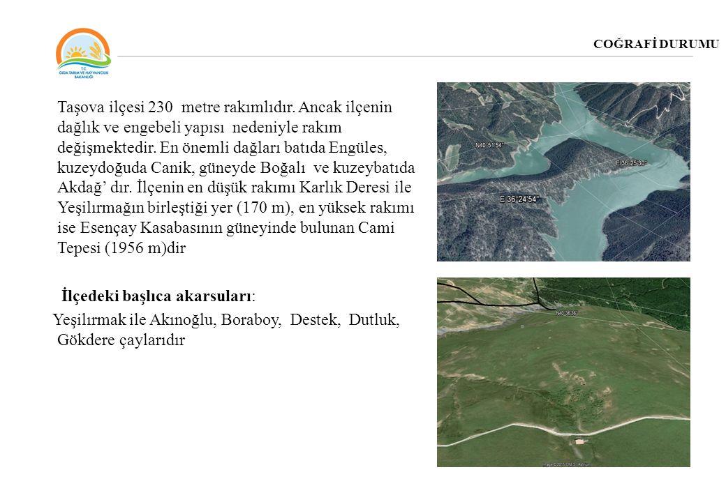 COĞRAFİ DURUMU Taşova ilçesi 230 metre rakımlıdır. Ancak ilçenin dağlık ve engebeli yapısı nedeniyle rakım değişmektedir. En önemli dağları batıda Eng