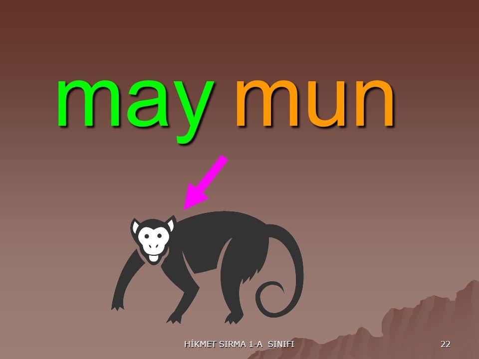 HİKMET SIRMA 1-A SINIFI 22 maymun