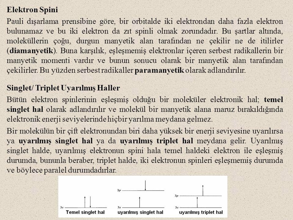 Elektron Spini Pauli dışarlama prensibine göre, bir orbitalde iki elektrondan daha fazla elektron bulunamaz ve bu iki elektron da zıt spinli olmak zorundadır.