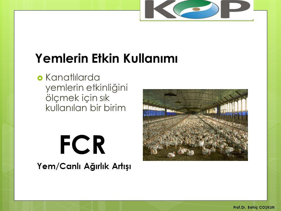 Yemlerin Etkin Kullanımı  Kanatlılarda yemlerin etkinliğini ölçmek için sık kullanılan bir birim FCR Yem/Canlı Ağırlık Artışı Prof.Dr.