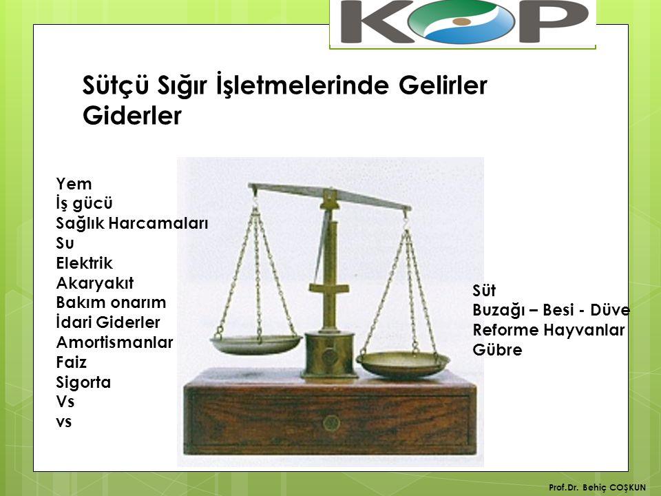 Türkiye'de Süt Üretimi 2014 yılı Toplam Süt Üretimi 18.5 milyon ton İnek Sütü 16,9 milyon ton Prof.Dr.
