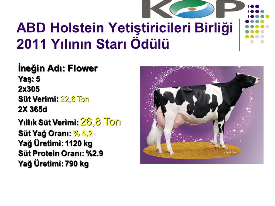 ABD Holstein Yetiştiricileri Birliği 2011 Yılının Starı Ödülü İneğin Adı: Flower Yaş: 5 2x305 Süt Verimi: 22,6 Ton 2X 365d Yıllık Süt Verimi: 26,8 Ton Süt Yağ Oranı: % 4,2 Yağ Üretimi: 1120 kg Süt Protein Oranı: %2.9 Yağ Üretimi: 790 kg