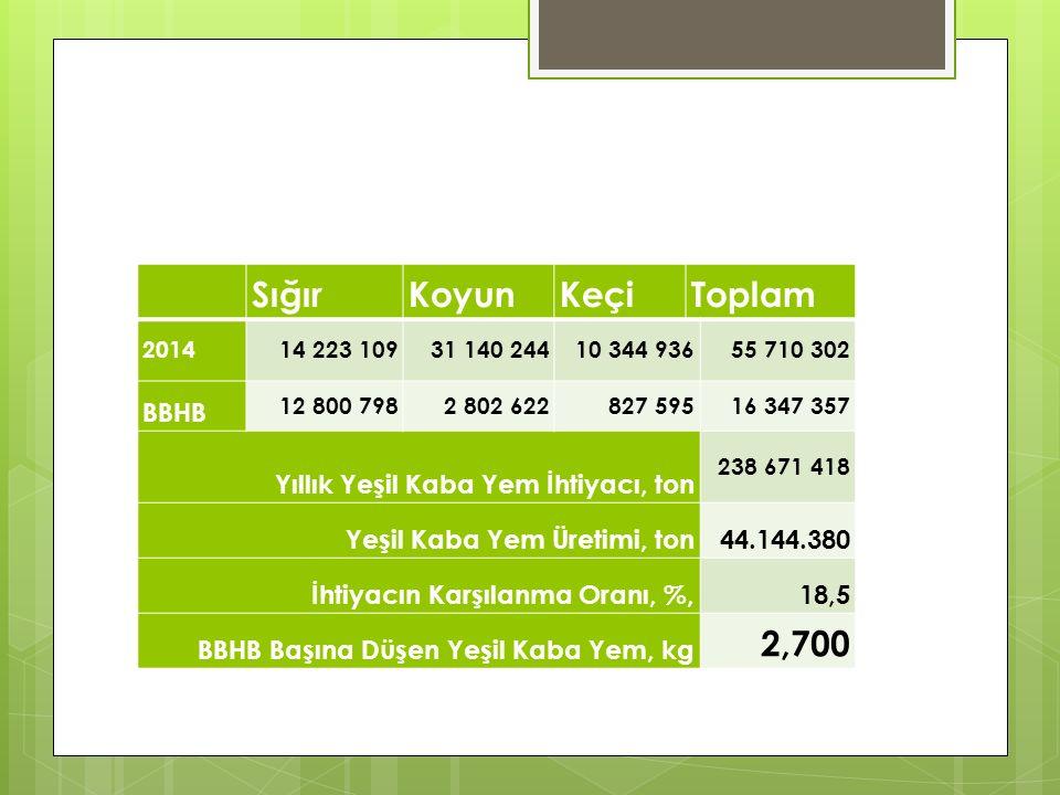 SığırKoyunKeçiToplam 201414 223 10931 140 24410 344 93655 710 302 BBHB 12 800 7982 802 622 827 59516 347 357 Yıllık Yeşil Kaba Yem İhtiyacı, ton 238 671 418 Yeşil Kaba Yem Üretimi, ton44.144.380 İhtiyacın Karşılanma Oranı, %,18,5 BBHB Başına Düşen Yeşil Kaba Yem, kg 2,700