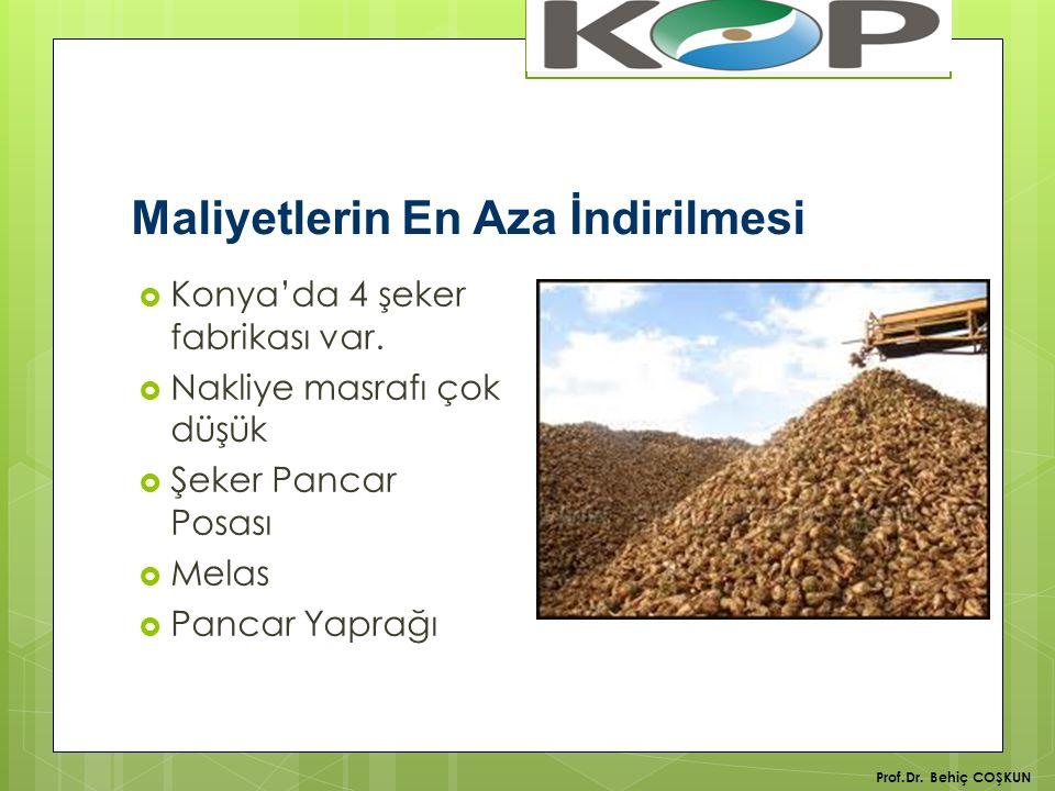  Konya'da 4 şeker fabrikası var.