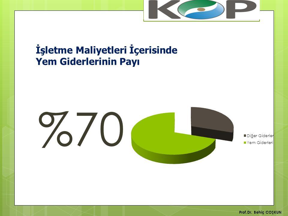 İşletme Maliyetleri İçerisinde Yem Giderlerinin Payı %70 Prof.Dr. Behiç COŞKUN