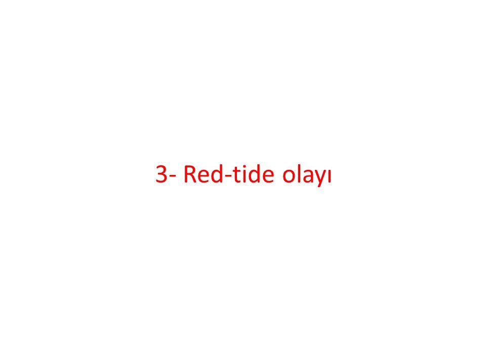 3- Red-tide olayı
