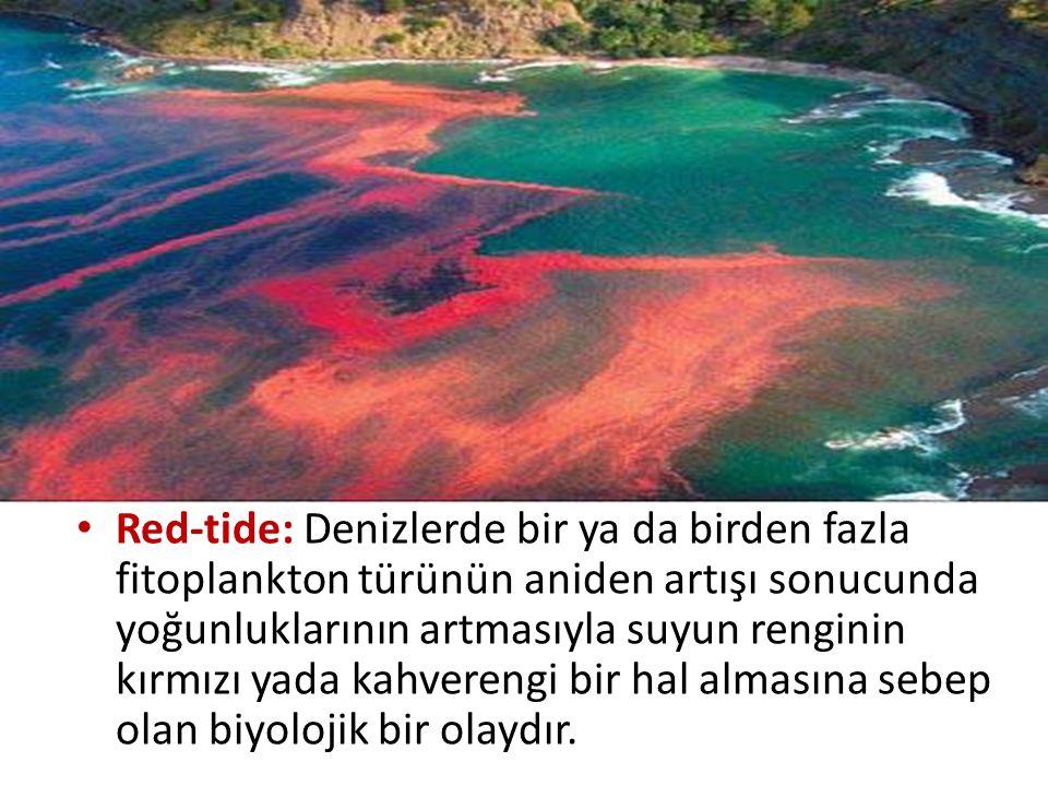 Red-tide: Denizlerde bir ya da birden fazla fitoplankton türünün aniden artışı sonucunda yoğunluklarının artmasıyla suyun renginin kırmızı yada kahver