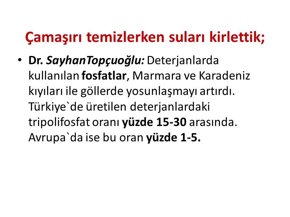 Çamaşırı temizlerken suları kirlettik; Dr. SayhanTopçuoğlu: Deterjanlarda kullanılan fosfatlar, Marmara ve Karadeniz kıyıları ile göllerde yosunlaşmay