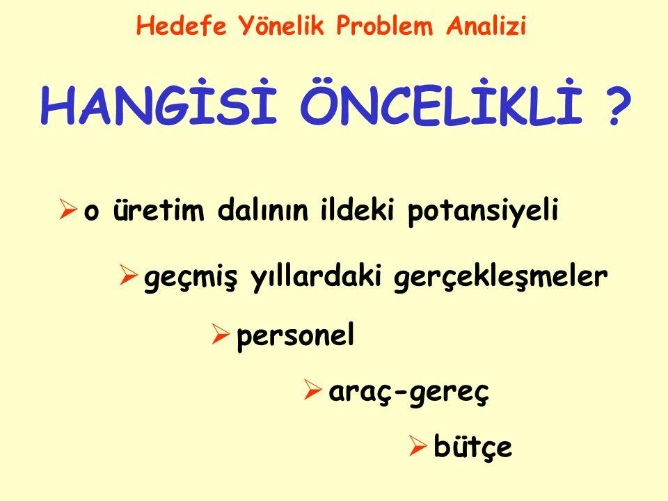 İldeki problemlerden; Hedefe Yönelik Problem Analizi HANGİSİ ÖNCELİKLİ ? Hazırlanan problem ağacındaki problemlerden; HANGİSİ ÖNCELİKLİ ?