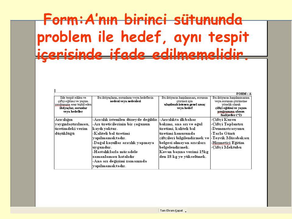  İldeki sorunlar, öncelik tespiti yapıldıktan ve hangi düzeyde çalışılacağına karar verildikten sonra; birbirini takip edecek şekilde Form:A'ya yerleştirilir.