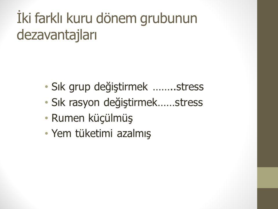 İki farklı kuru dönem grubunun dezavantajları Sık grup değiştirmek ……..stress Sık rasyon değiştirmek……stress Rumen küçülmüş Yem tüketimi azalmış