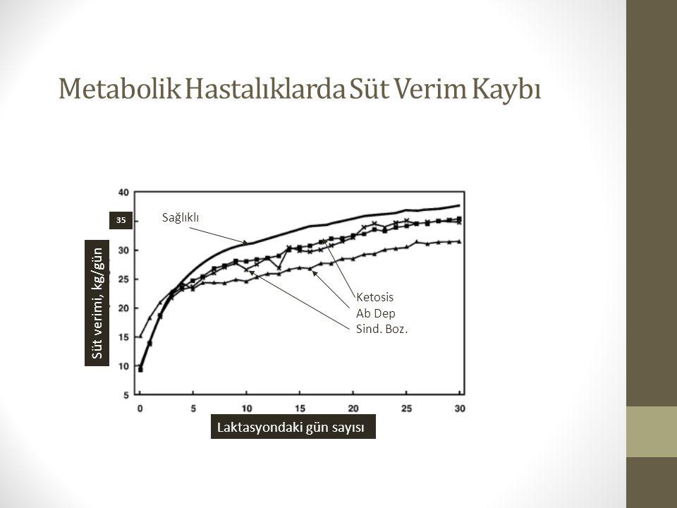 Metabolik Hastalıklarda Süt Verim Kaybı Süt verimi, kg/gün Laktasyondaki gün sayısı 35 Ketosis Ab Dep Sind. Boz. Sağlıklı Edwards and Tozer,2004