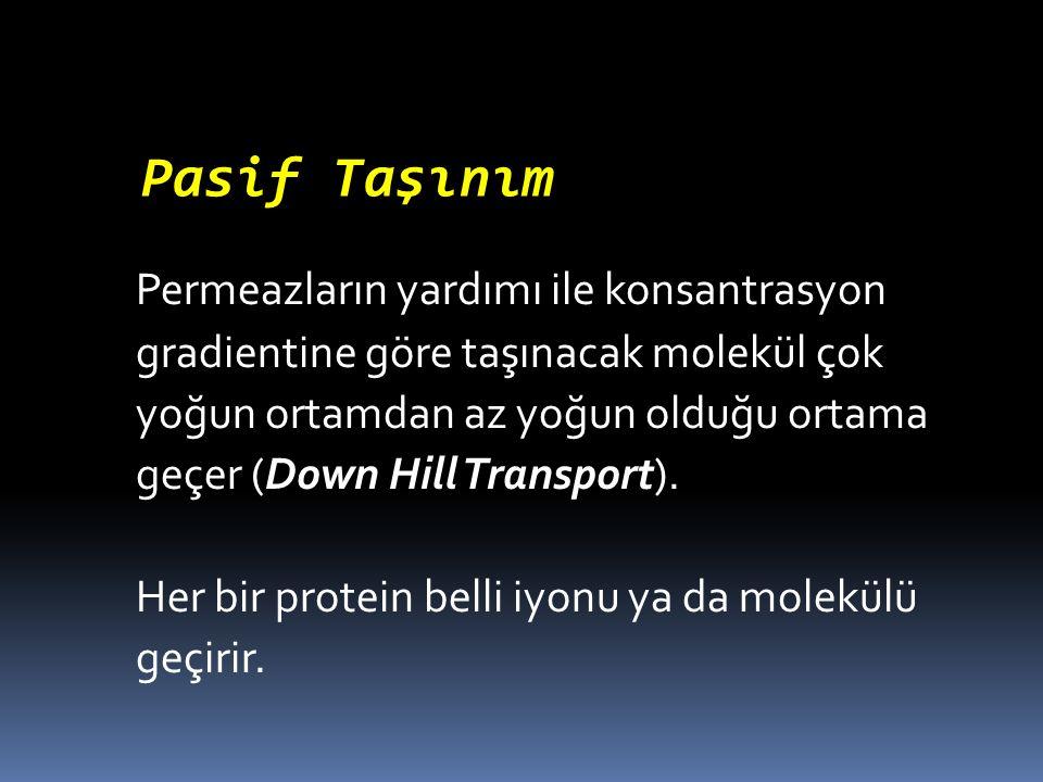 Permeazların yardımı ile konsantrasyon gradientine göre taşınacak molekül çok yoğun ortamdan az yoğun olduğu ortama geçer (Down Hill Transport). Her b