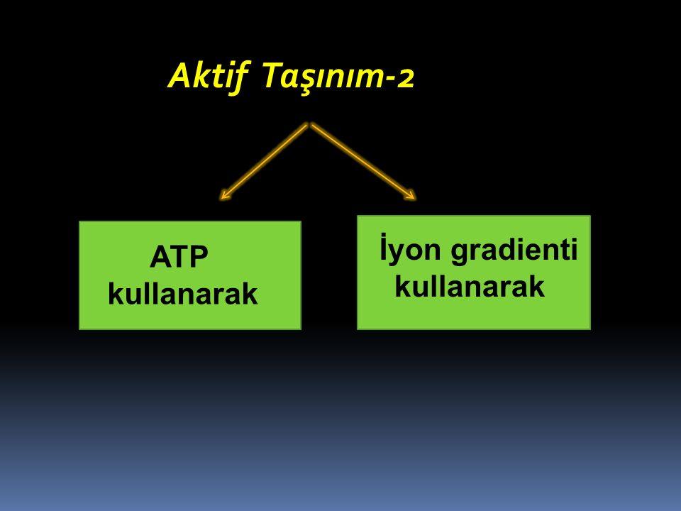 Aktif Taşınım-2 ATP kullanarak İyon gradienti kullanarak