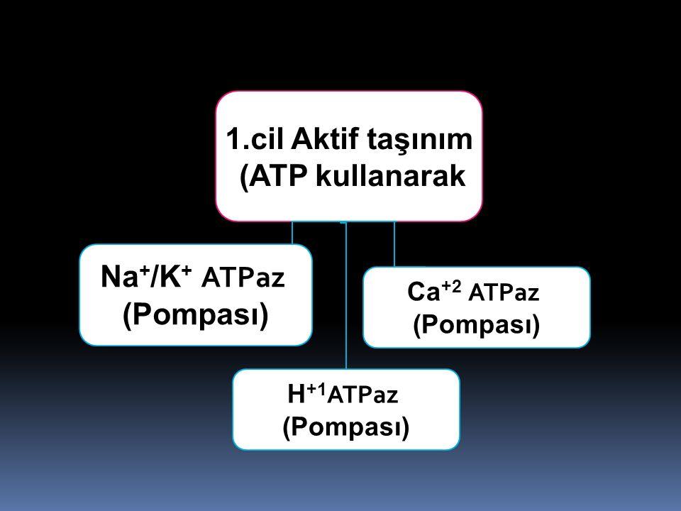 H +1 ATPaz (Pompası) 1.cil Aktif taşınım (ATP kullanarak) Na + /K + ATPaz (Pompası) Ca +2 ATPaz (Pompası)