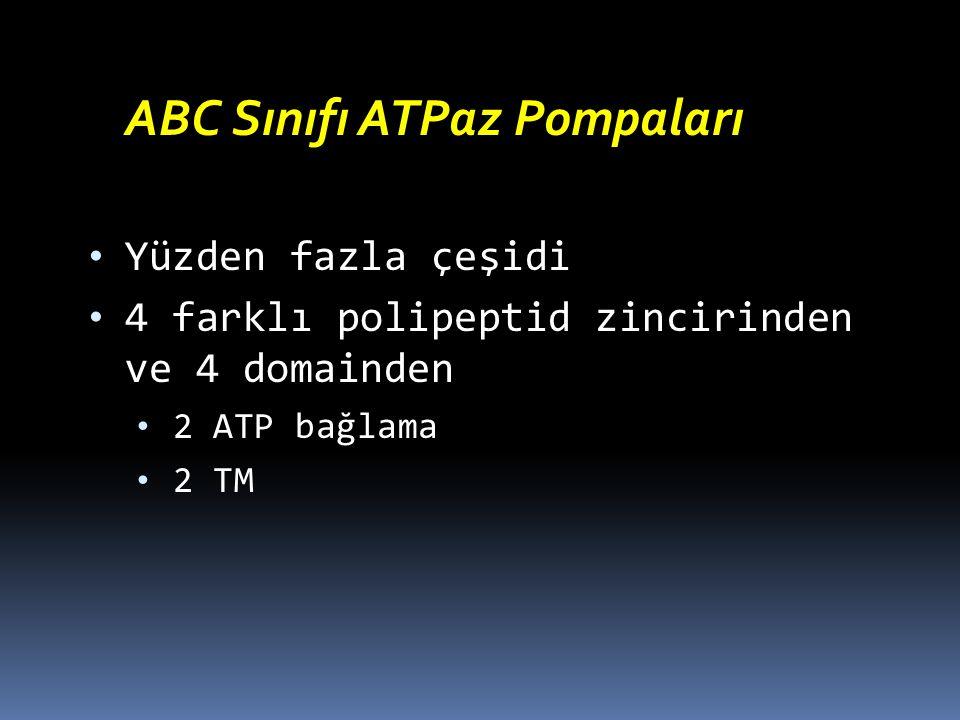 ABC Sınıfı ATPaz Pompaları Yüzden fazla çeşidi 4 farklı polipeptid zincirinden ve 4 domainden 2 ATP bağlama 2 TM