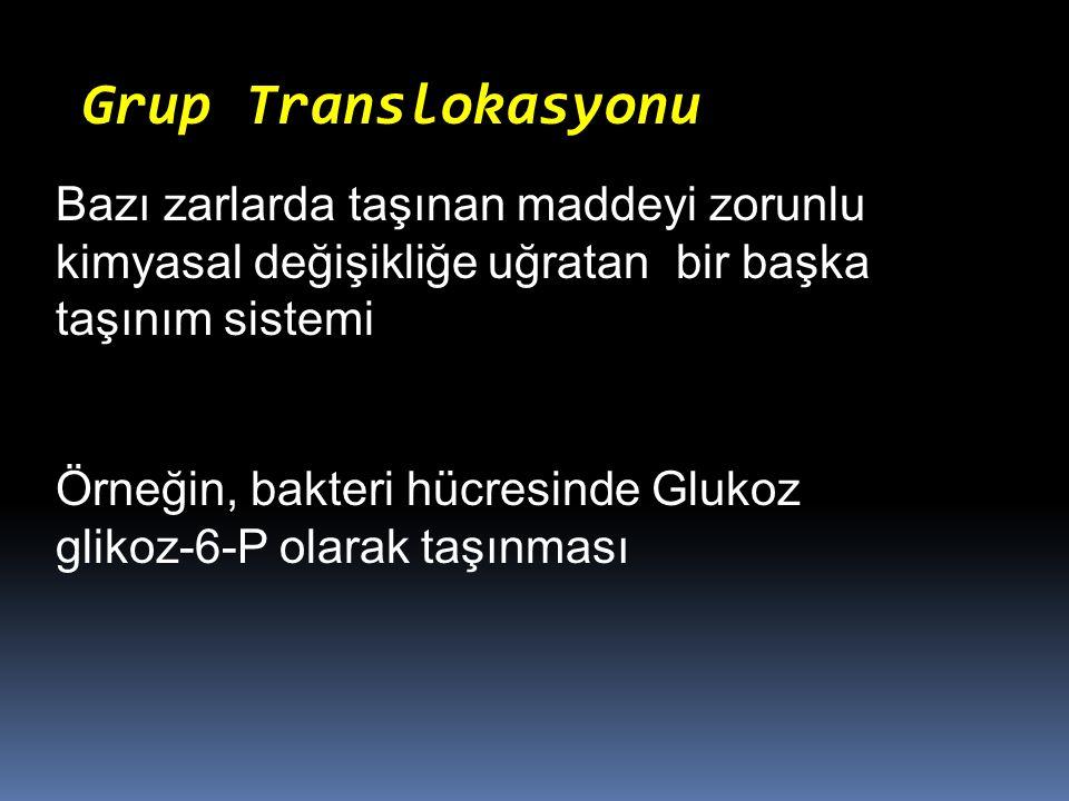 Grup Translokasyonu Bazı zarlarda taşınan maddeyi zorunlu kimyasal değişikliğe uğratan bir başka taşınım sistemi Örneğin, bakteri hücresinde Glukoz gl
