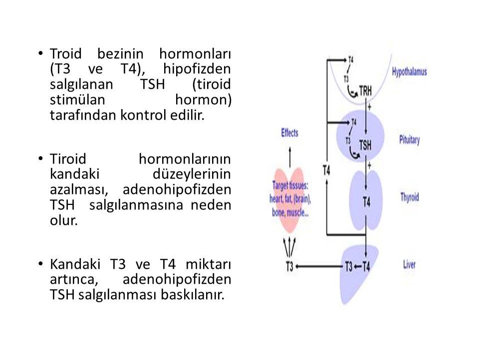Troid bezinin hormonları (T3 ve T4), hipofizden salgılanan TSH (tiroid stimülan hormon) tarafından kontrol edilir. Tiroid hormonlarının kandaki düzeyl