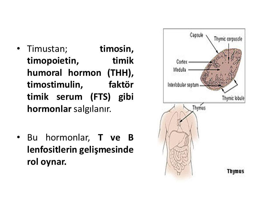 Timustan; timosin, timopoietin, timik humoral hormon (THH), timostimulin, faktör timik serum (FTS) gibi hormonlar salgılanır. Bu hormonlar, T ve B len