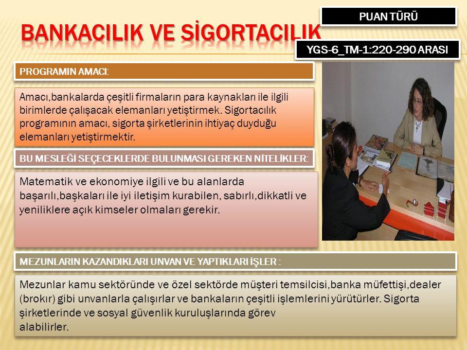 PUAN TÜRÜ YGS-6_TM-1:220-290 ARASI PROGRAMIN AMACI: Amacı,bankalarda çeşitli firmaların para kaynakları ile ilgili birimlerde çalışacak elemanları yetiştirmek.