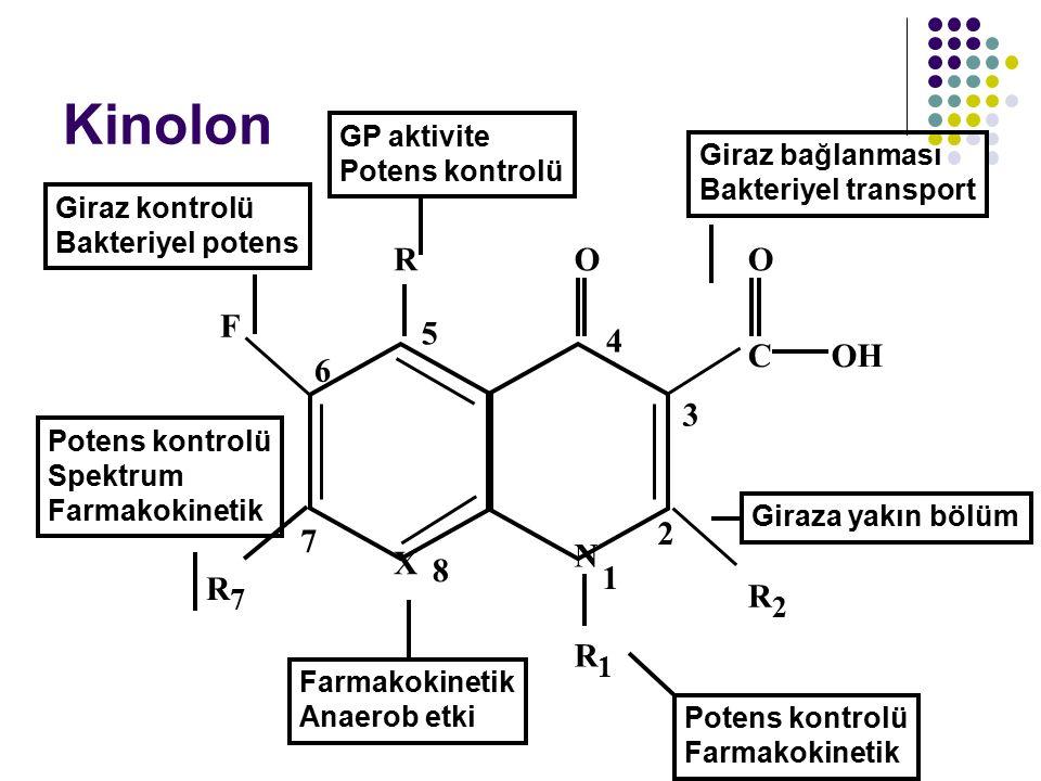 Kinolon Farmakokinetik Anaerob etki Potens kontrolü Farmakokinetik Giraza yakın bölüm Giraz kontrolü Bakteriyel potens GP aktivite Potens kontrolü Gir