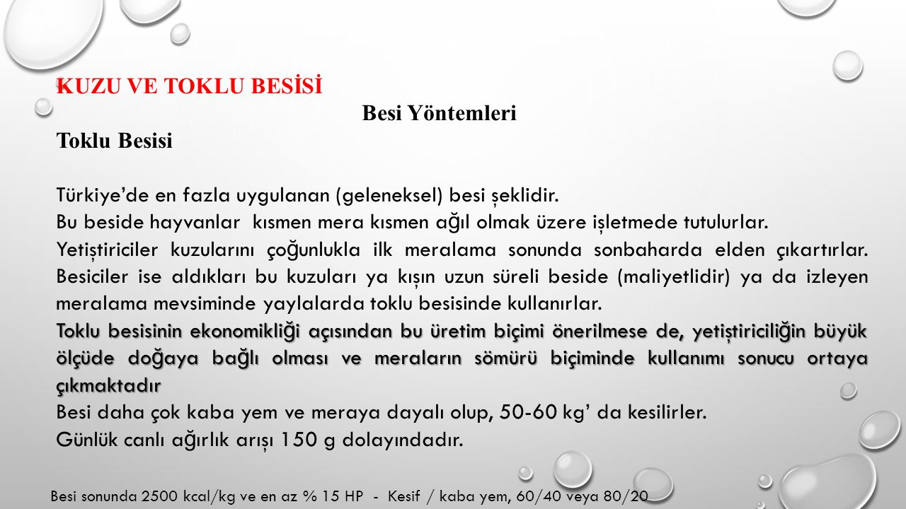KUZU VE TOKLU BESİSİ Besi Yöntemleri Toklu Besisi Türkiye'de en fazla uygulanan (geleneksel) besi şeklidir. Bu beside hayvanlar kısmen mera kısmen a ğ