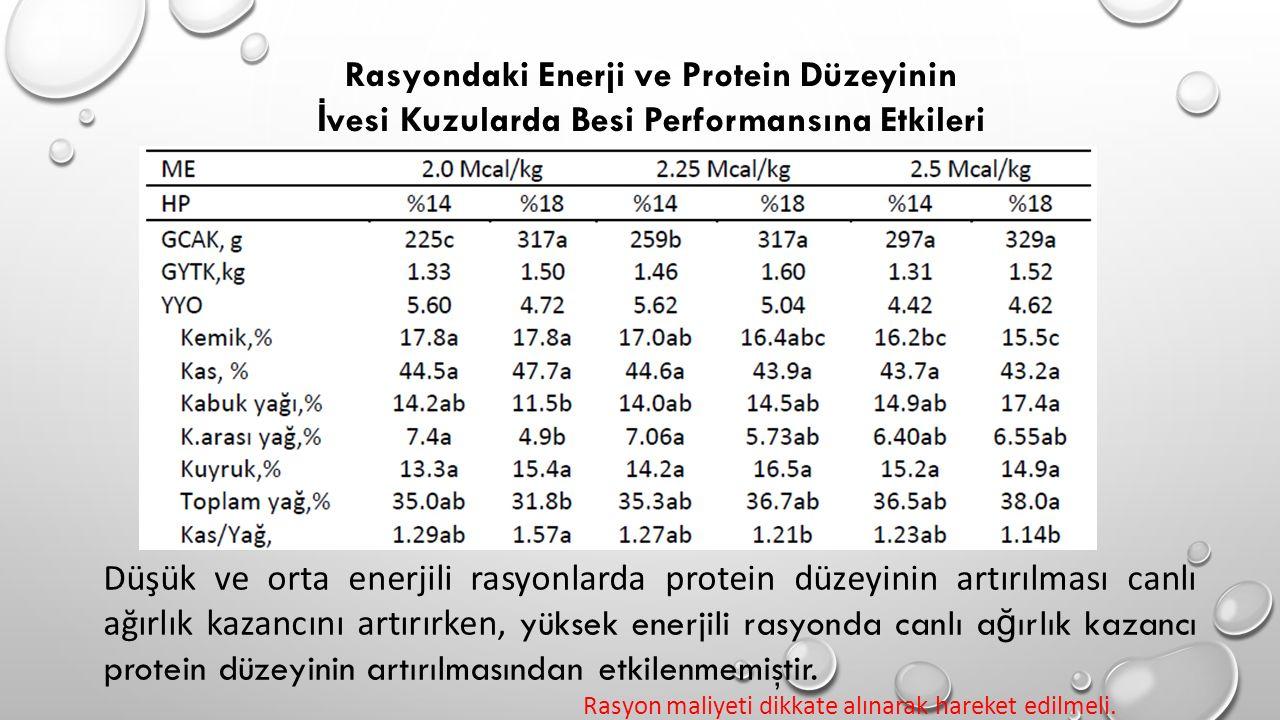 Rasyondaki Enerji ve Protein Düzeyinin İ vesi Kuzularda Besi Performansına Etkileri Düşük ve orta enerjili rasyonlarda protein düzeyinin artırılması c