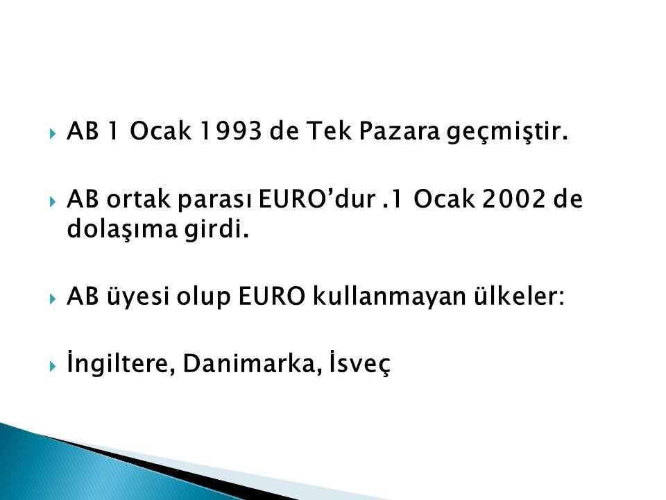  AB 1 Ocak 1993 de Tek Pazara geçmiştir.  AB ortak parası EURO'dur.1 Ocak 2002 de dolaşıma girdi.  AB üyesi olup EURO kullanmayan ülkeler:  İngilt