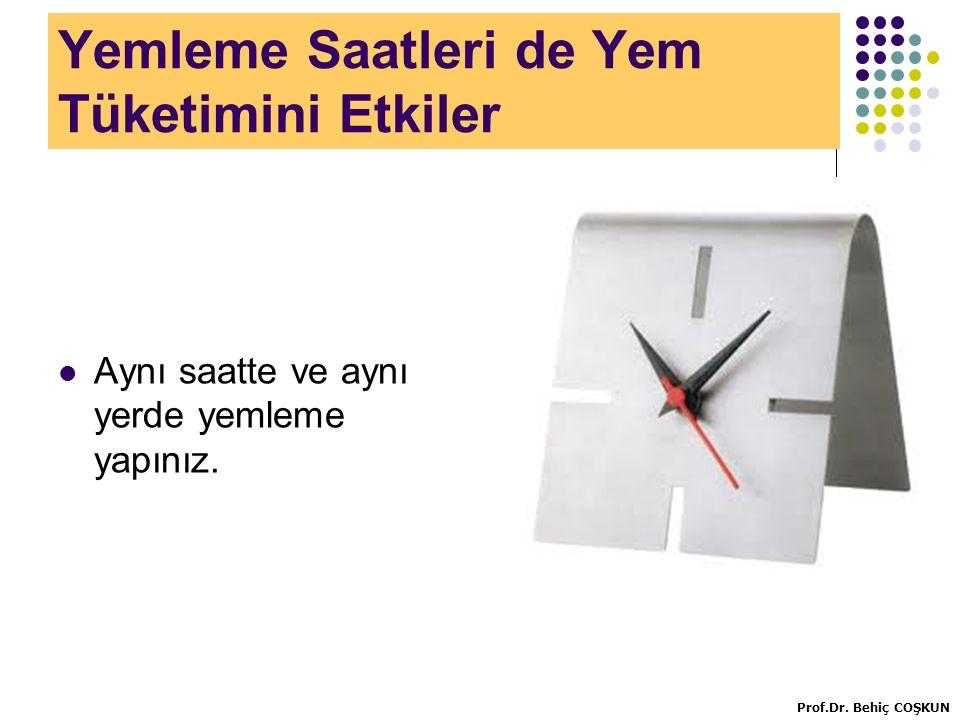 Yemleme Saatleri de Yem Tüketimini Etkiler Aynı saatte ve aynı yerde yemleme yapınız.