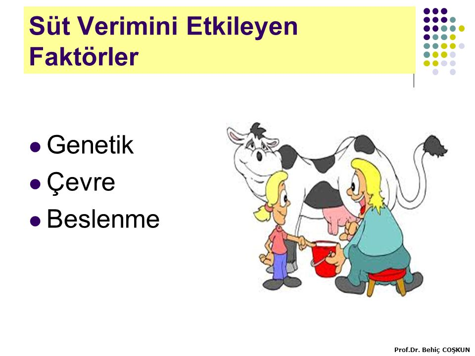 Farklı verim ve canlı ağırlıktaki süt ineklerinde kuru madde tüketimi (NRC) Prof.Dr. Behiç COŞKUN