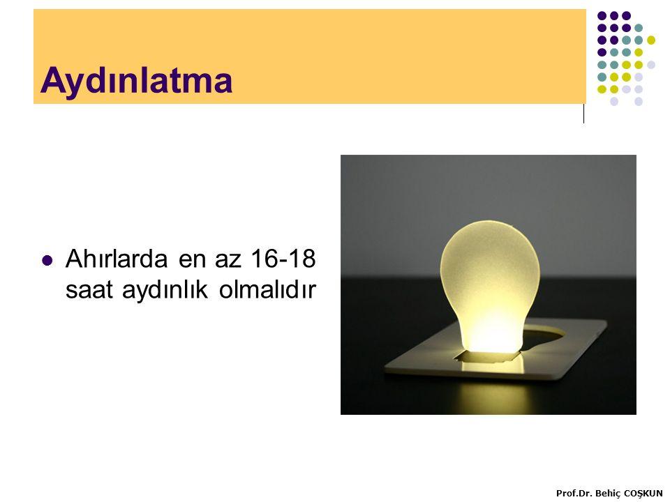 Aydınlatma Ahırlarda en az 16-18 saat aydınlık olmalıdır Prof.Dr. Behiç COŞKUN