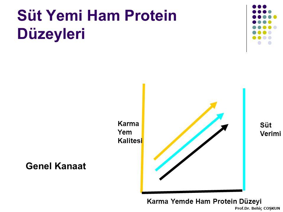 Süt Yemi Ham Protein Düzeyleri Karma Yemde Ham Protein Düzeyi Karma Yem Kalitesi Süt Verimi Genel Kanaat Prof.Dr.