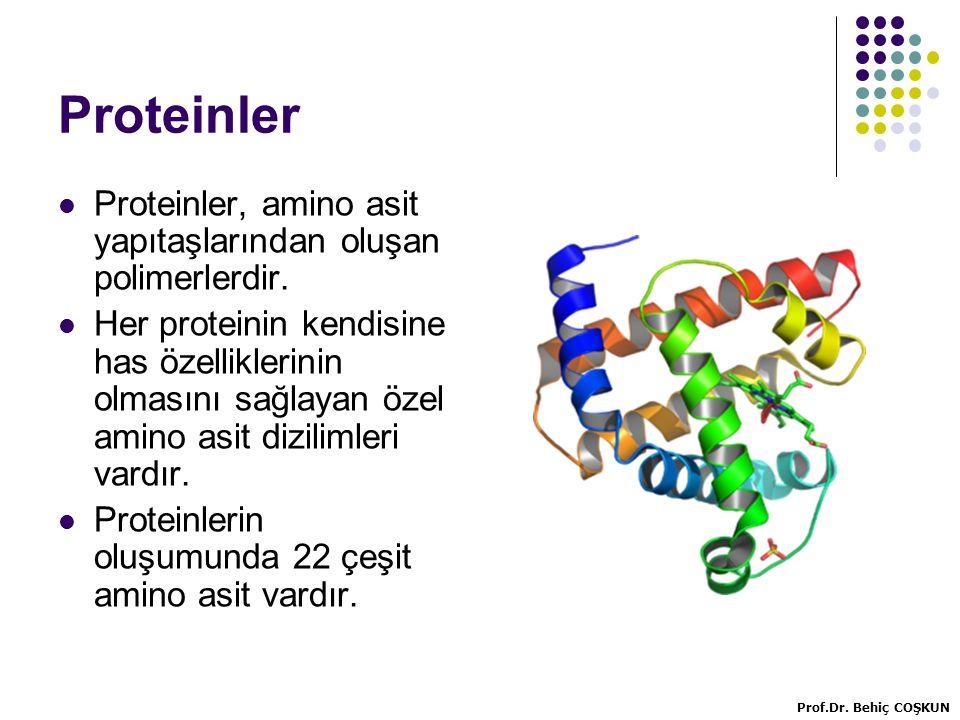 Proteinler Proteinler, amino asit yapıtaşlarından oluşan polimerlerdir.