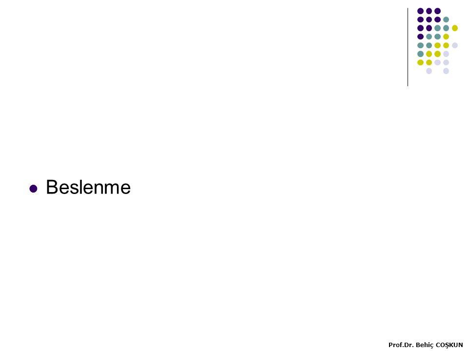 Rumen bakterileri ve bazı yemlerde aminoasit kompozisyonu DokuSütBakteriMısırSoya Methionin1,972,712,62,281,46 Lysin6,377,627,93,036,32 Histidin2,472,7423,162,72 Phenylalanin3,534,755,15,325,65 Tryptofan0,491,511,20,891,46 Threonin3,93,725,83,674,18 Leucin6,79,188,112,667,95 İsoleucin2,845,795,73,675,44 Valin4,035,896,25,325,65 Arginin3,33,45,15,087,53