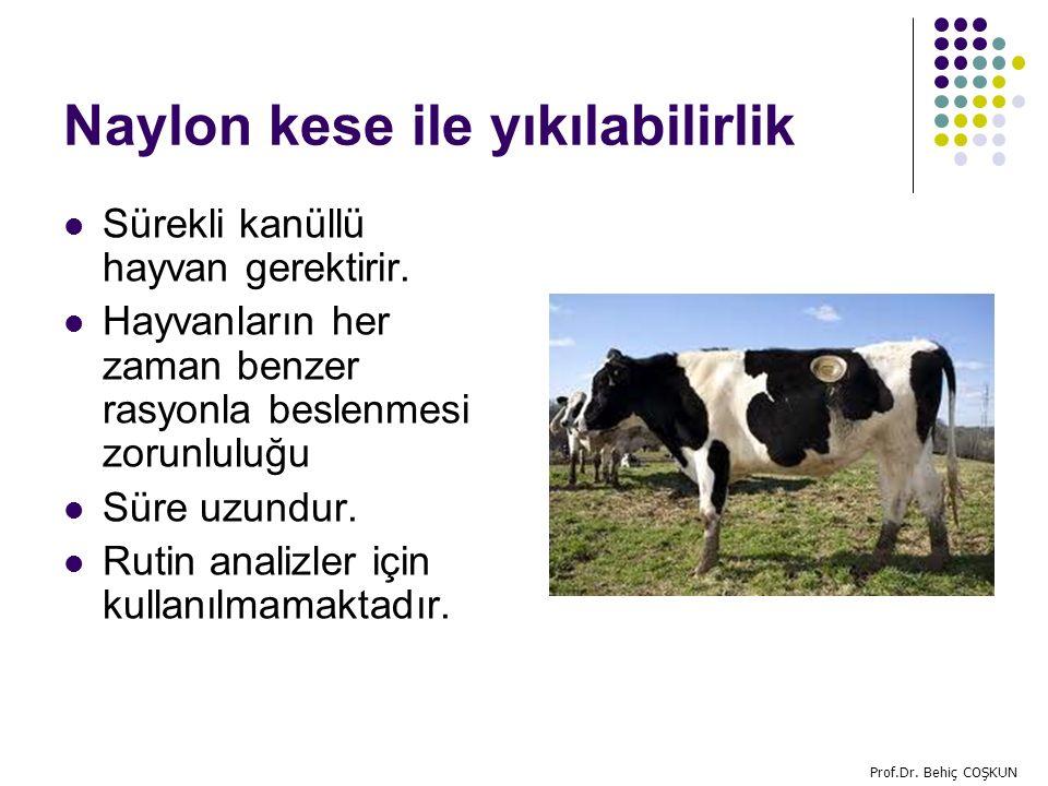 Naylon kese ile yıkılabilirlik Sürekli kanüllü hayvan gerektirir.