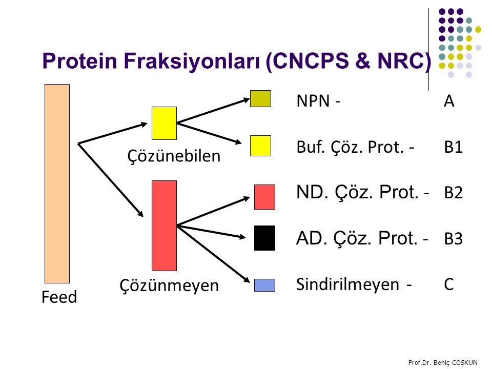 Protein Fraksiyonları (CNCPS & NRC) Çözünebilen Çözünmeyen NPN - A Buf.