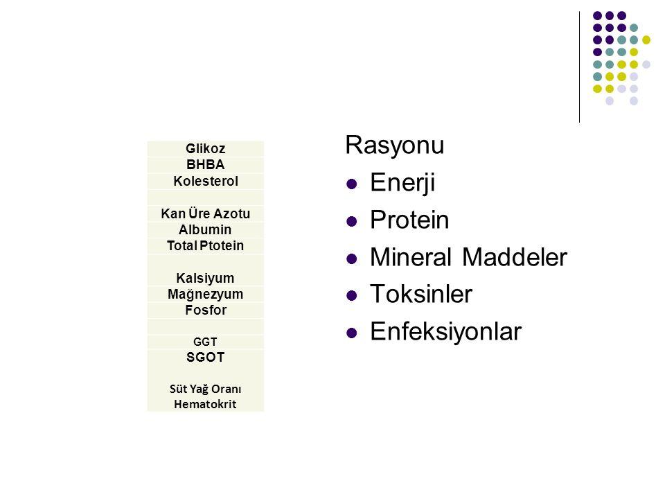 Glikoz BHBA Kolesterol Kan Üre Azotu Albumin Total Ptotein Kalsiyum Mağnezyum Fosfor GGT SGOT Süt Yağ Oranı Hematokrit Rasyonu Enerji Protein Mineral Maddeler Toksinler Enfeksiyonlar