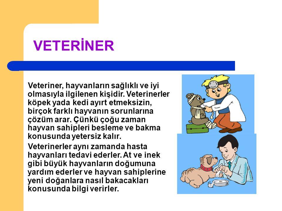 VETERİNER Veteriner, hayvanların sağlıklı ve iyi olmasıyla ilgilenen kişidir.