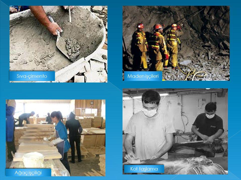 Sıva-çimento Maden işçileri Kot taşlama Ağaç işçiliği