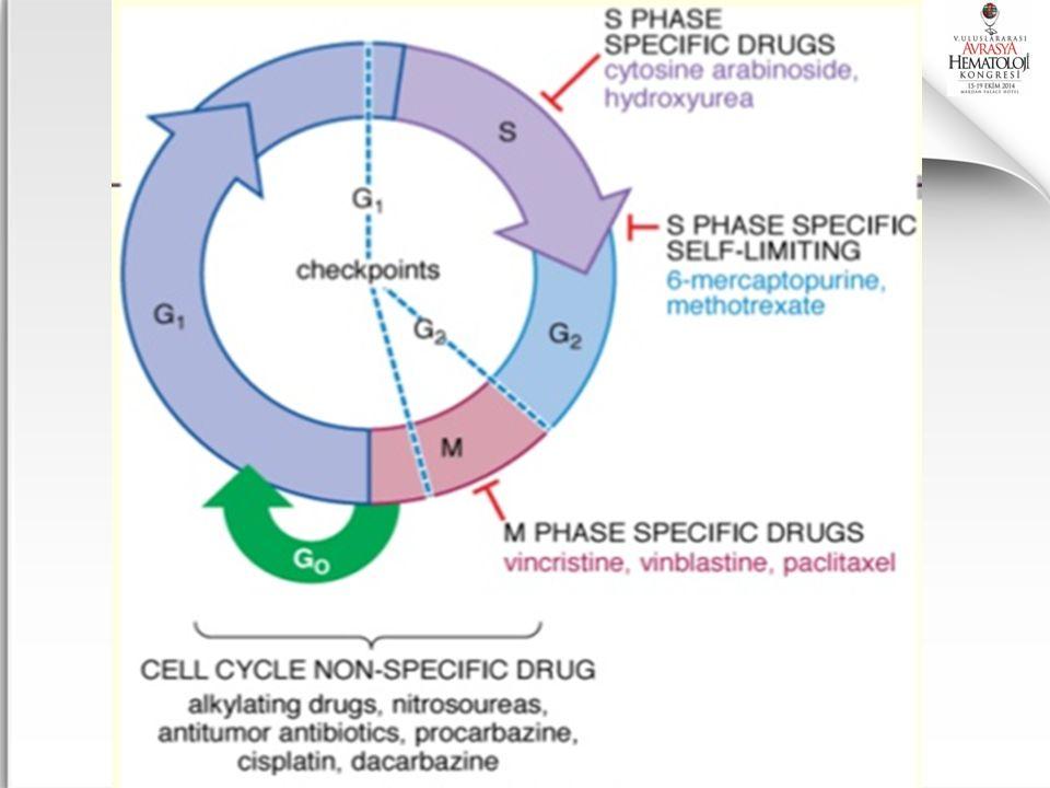 I.Kemoterapi ilaçları=Sitotoksik ilaçlar II. Hormonlar ve hormon antagonistleri III.